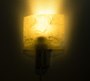 Picture of 3D Printed Custom Night Lamp